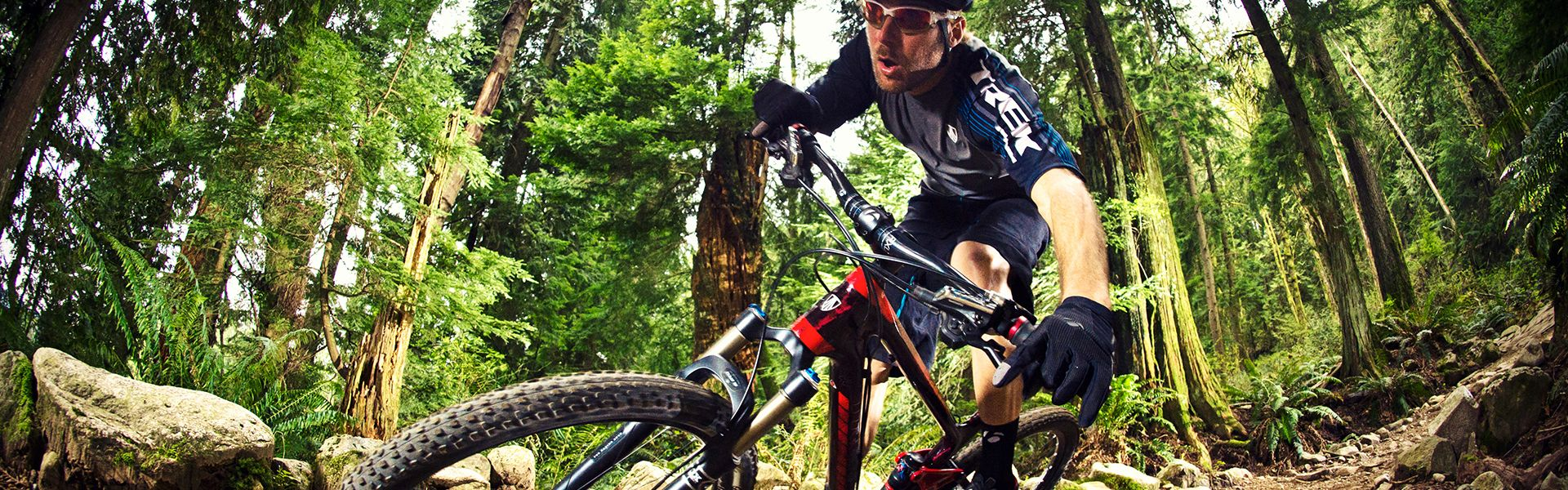 Mountain bike lawyer
